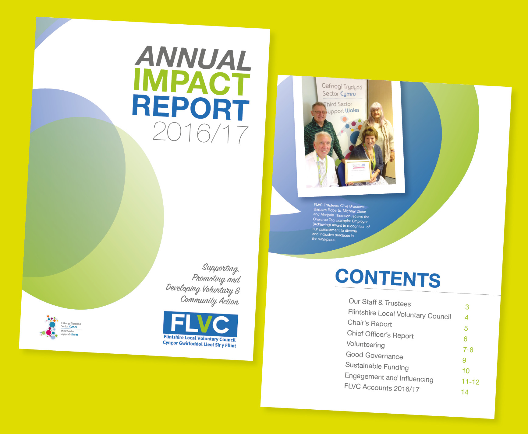 FLVC annual report